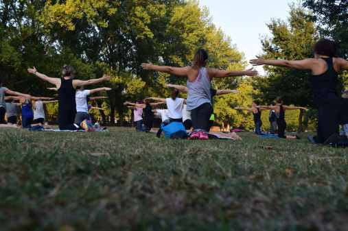 women performing yoga on green grass near trees